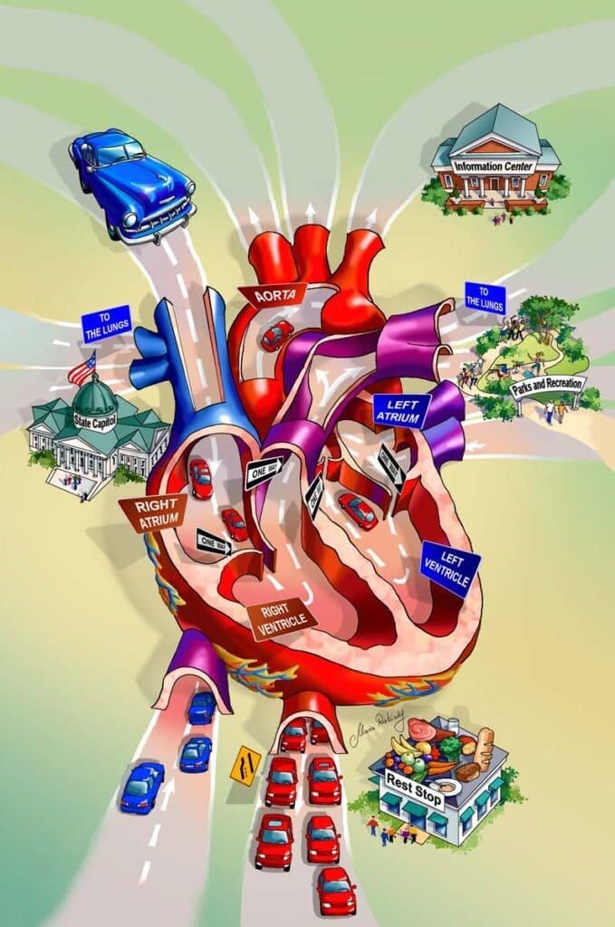 Heart Trip Cutaway Map Illustration by Maria Rabinky